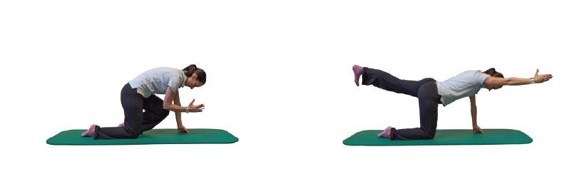 4-Füßler-Stand mit Beugen/Strecken des diagonalen Armes/Beines