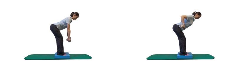 Rudern im hüftbreiten Stand mit Zusatzlast auf instabiler Unterlage