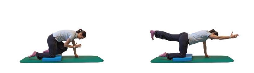 4-Füßler-Stand mit Beugen/Strecken des diagonalen Armes/Beines auf instabiler Unterlage