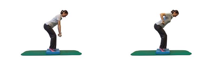Rudern im hüftbreiten Ballenstand mit Zusatzlast