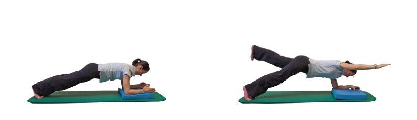 Unterarmstütz mit wechselseitigem Heben des diagonalen Armes/Beines